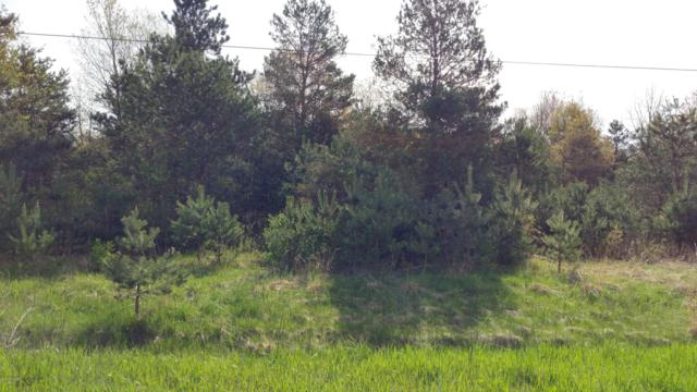 0 Rich Road 2.54 Acres, Muskegon, MI 49445 (MLS #18048769) :: Deb Stevenson Group - Greenridge Realty