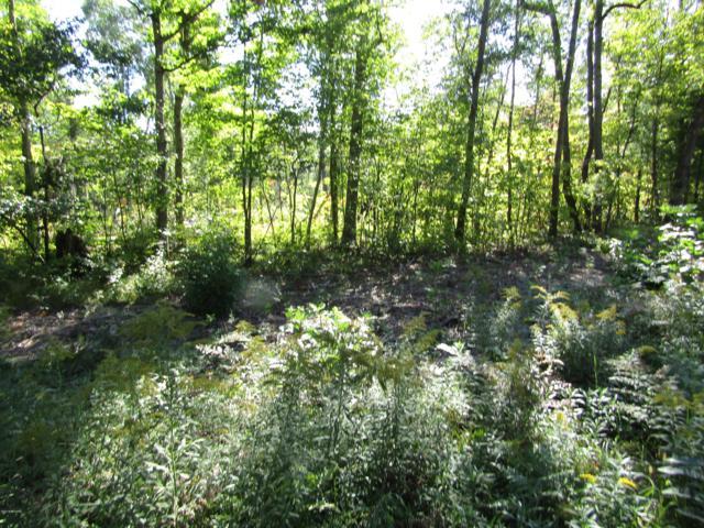 0 W Willow, White Cloud, MI 49349 (MLS #18048774) :: Deb Stevenson Group - Greenridge Realty