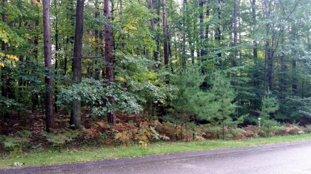Breckenridge Drive, Ludington, MI 49431 (MLS #18048967) :: Deb Stevenson Group - Greenridge Realty
