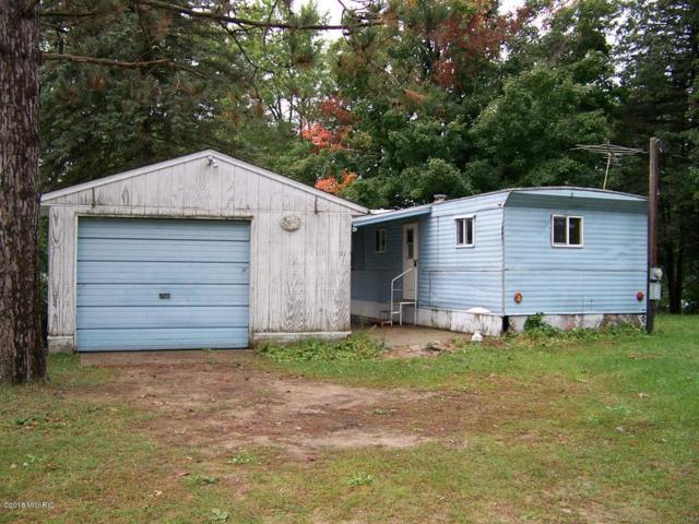 11676 Riverside Drive, Stanwood, MI 49346 (MLS #18049084) :: Deb Stevenson Group - Greenridge Realty