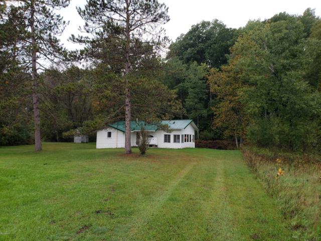 3695 E Lane Drive, Chase, MI 49623 (MLS #18049336) :: Deb Stevenson Group - Greenridge Realty