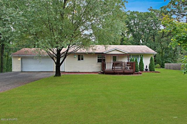 16360 Red Pine Drive NW, Kent City, MI 49330 (MLS #18049453) :: Deb Stevenson Group - Greenridge Realty