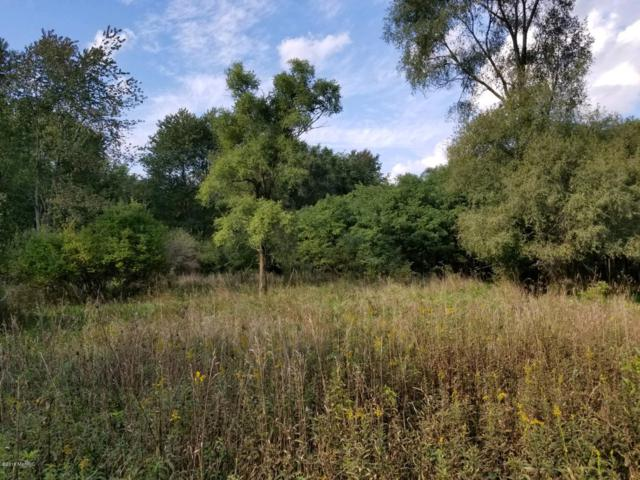 N Fall River Drive, Coldwater, MI 49036 (MLS #18049470) :: Carlson Realtors & Development