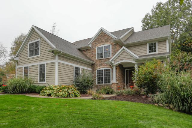 6841 Wild Plum Ridge, Richland, MI 49083 (MLS #18049568) :: Matt Mulder Home Selling Team
