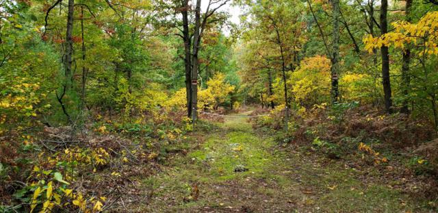 Yonker Road, Free Soil, MI 49411 (MLS #18049580) :: Deb Stevenson Group - Greenridge Realty