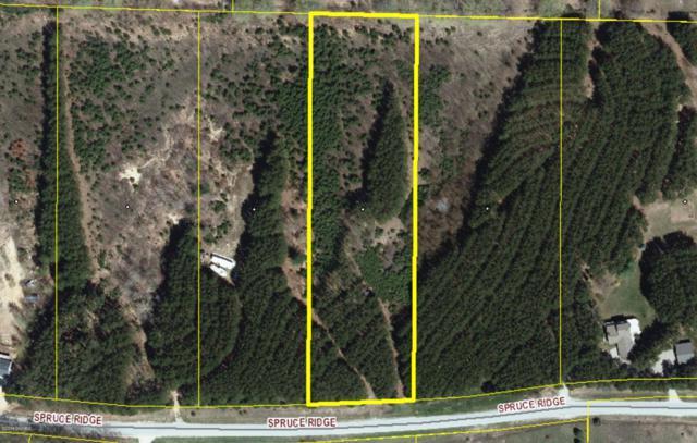 Lot 6 Spruce, Bear Lake, MI 49614 (MLS #18049581) :: JH Realty Partners
