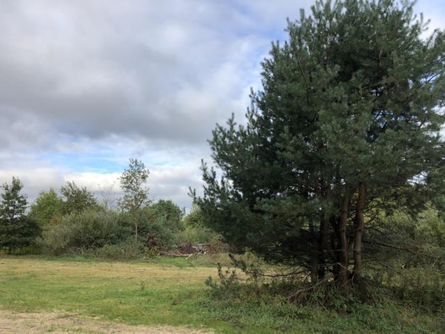 10615 Kissing Ridge, Lowell, MI 49331 (MLS #18049642) :: Deb Stevenson Group - Greenridge Realty