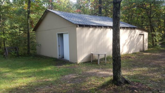 2313 W 12 Mile Road, Irons, MI 49644 (MLS #18049694) :: JH Realty Partners