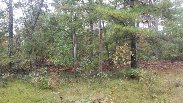 2358 W Links Road, Irons, MI 49644 (MLS #18049705) :: JH Realty Partners