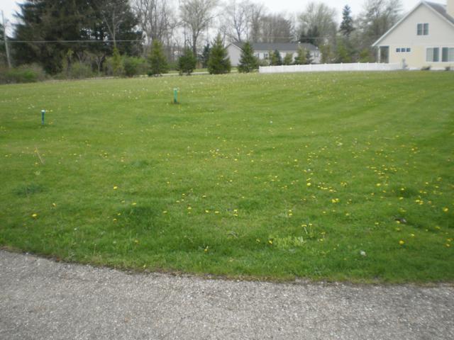 103 Diamond Point Lane #50, New Buffalo, MI 49117 (MLS #18049742) :: Deb Stevenson Group - Greenridge Realty