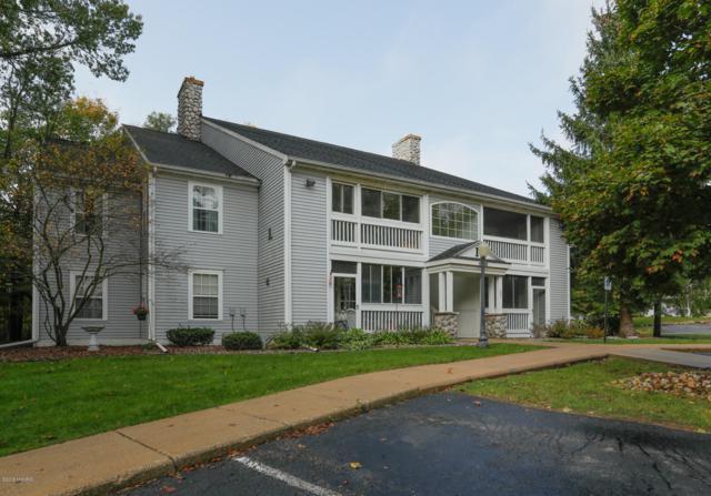 331 Boyer Court, Marshall, MI 49068 (MLS #18049781) :: Deb Stevenson Group - Greenridge Realty