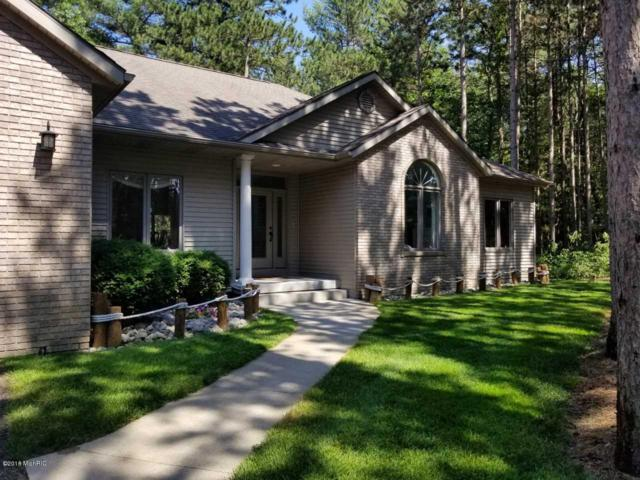 11330 Evert Court, West Olive, MI 49460 (MLS #18049864) :: JH Realty Partners