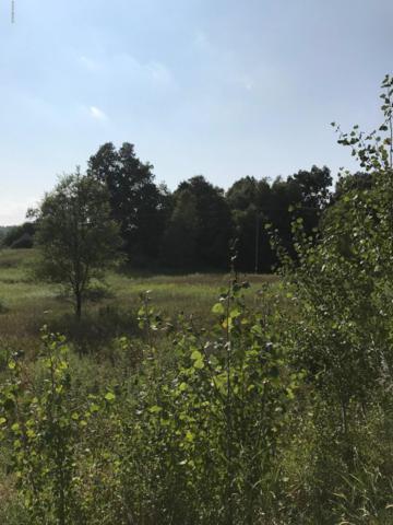 80 Acres Miller Road, Delton, MI 49046 (MLS #18049888) :: Deb Stevenson Group - Greenridge Realty