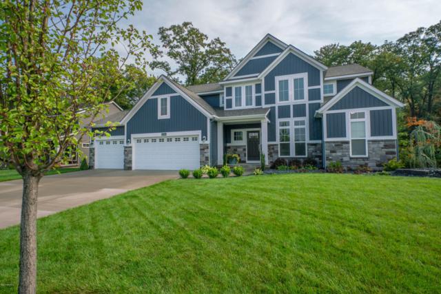 17134 Birchview Drive, Nunica, MI 49448 (MLS #18049933) :: Deb Stevenson Group - Greenridge Realty