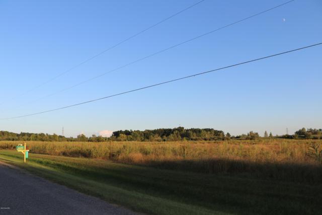 Watson Road, Sodus, MI 49126 (MLS #18049985) :: Deb Stevenson Group - Greenridge Realty