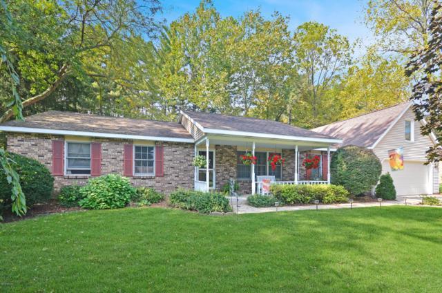 710 W Gun River Drive, Plainwell, MI 49080 (MLS #18050095) :: Matt Mulder Home Selling Team