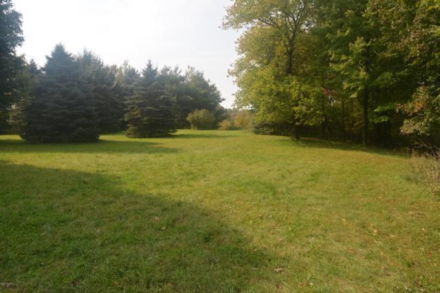 Lot 1 W. Pine St. Street, Grant, MI 49327 (MLS #18050154) :: Carlson Realtors & Development