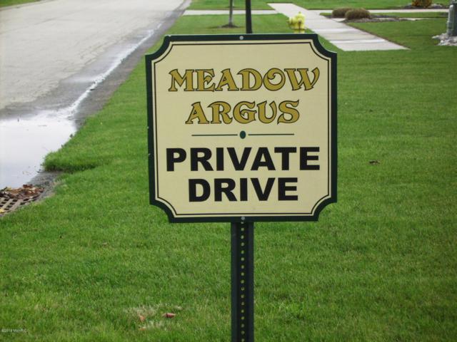 2967 Colfax Court #16, Fennville, MI 49408 (MLS #18050155) :: Deb Stevenson Group - Greenridge Realty