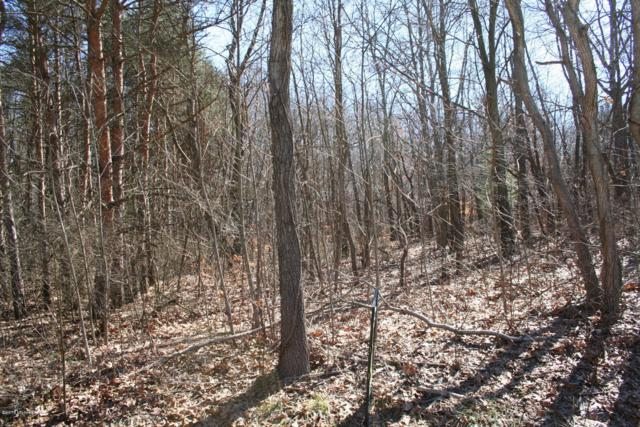 2.85 Acres 3rd Avenue, Dowagiac, MI 49047 (MLS #18050192) :: Deb Stevenson Group - Greenridge Realty