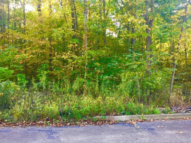 17270 River Bluff Drive, New Buffalo, MI 49117 (MLS #18050296) :: Deb Stevenson Group - Greenridge Realty
