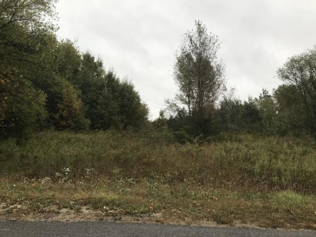Parcel A 107th Avenue, Pullman, MI 49450 (MLS #18050311) :: Carlson Realtors & Development