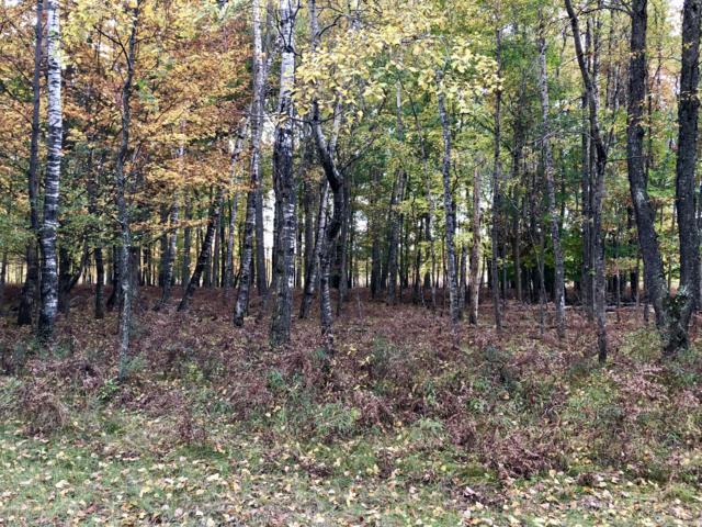 6173 Fox Run Circle #619, Canadian Lakes, MI 49346 (MLS #18050337) :: Deb Stevenson Group - Greenridge Realty