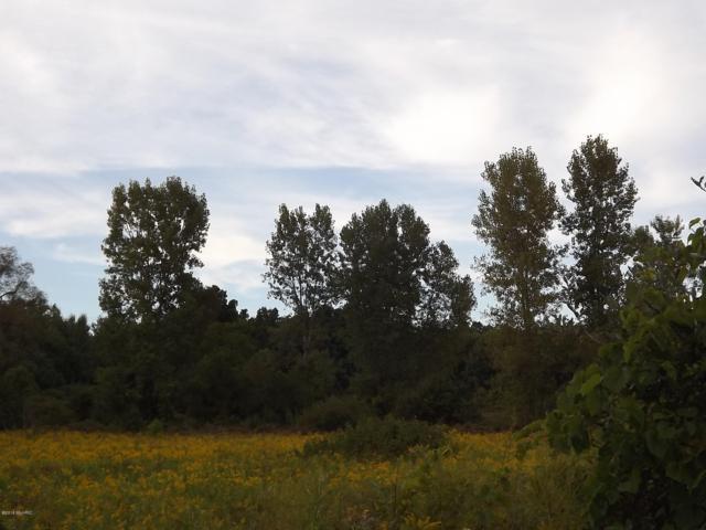 7075-B 16 Mile Road NE, Cedar Springs, MI 49319 (MLS #18050470) :: Deb Stevenson Group - Greenridge Realty
