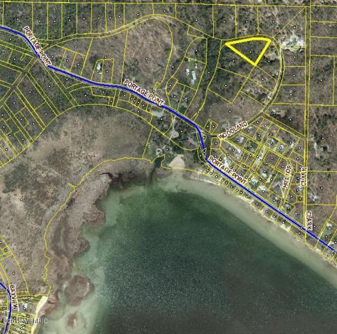2 Acres Woodland Drive, Onekama, MI 49675 (MLS #18050503) :: Deb Stevenson Group - Greenridge Realty