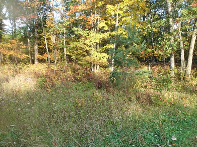 Caberfae Highway, Wellston, MI 49689 (MLS #18050581) :: Deb Stevenson Group - Greenridge Realty
