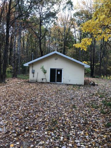 2211 Indian Village Rd, Brethren, MI 49619 (MLS #18050663) :: Deb Stevenson Group - Greenridge Realty