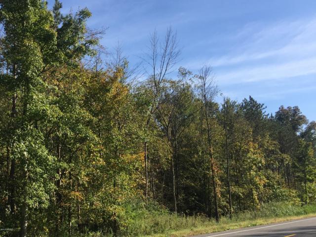 17969 Hoder Road, New Buffalo, MI 49117 (MLS #18050701) :: Deb Stevenson Group - Greenridge Realty