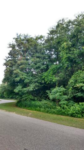 N Brookridge Rd. 18 &19, Ludington, MI 49431 (MLS #18050957) :: JH Realty Partners