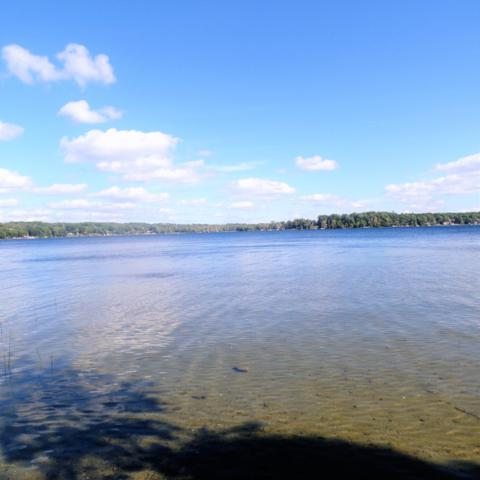 Effie Drive, Chippewa Lake, MI 49320 (MLS #18051412) :: Matt Mulder Home Selling Team