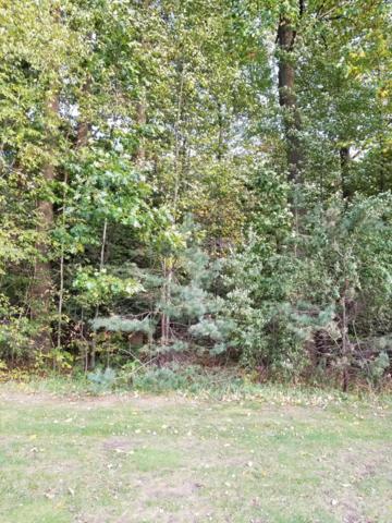 3547 Palmer Drive #13, Saugatuck, MI 49453 (MLS #18051592) :: Deb Stevenson Group - Greenridge Realty