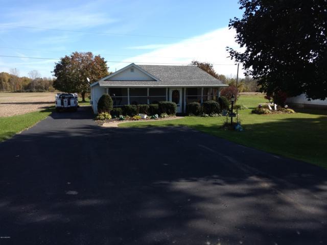 45519 68th Street, Hartford, MI 49057 (MLS #18051871) :: Matt Mulder Home Selling Team
