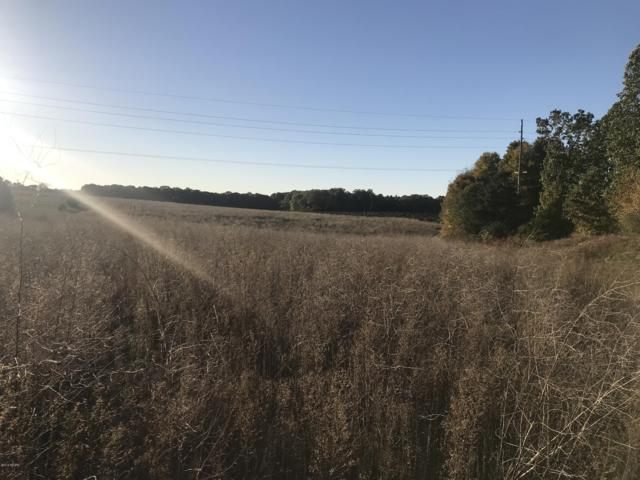 000 County Road 653, Paw Paw, MI 49079 (MLS #18051916) :: JH Realty Partners