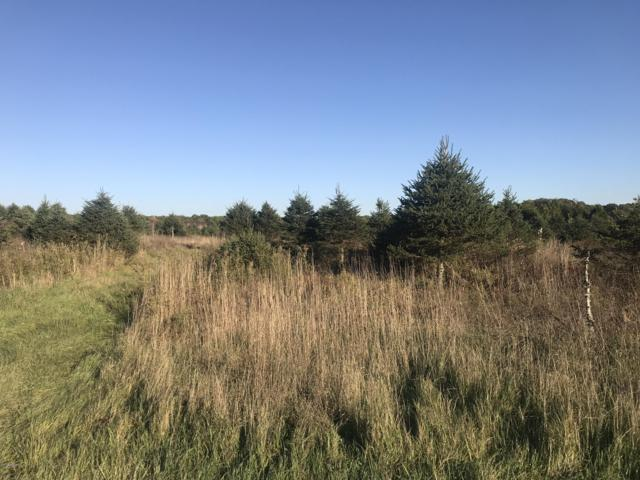 000 County Road 657, Paw Paw, MI 49079 (MLS #18051927) :: JH Realty Partners