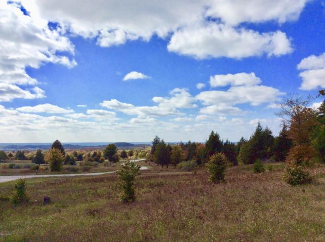 N North Slope Drive #95, Onekama, MI 49675 (MLS #18052140) :: Deb Stevenson Group - Greenridge Realty