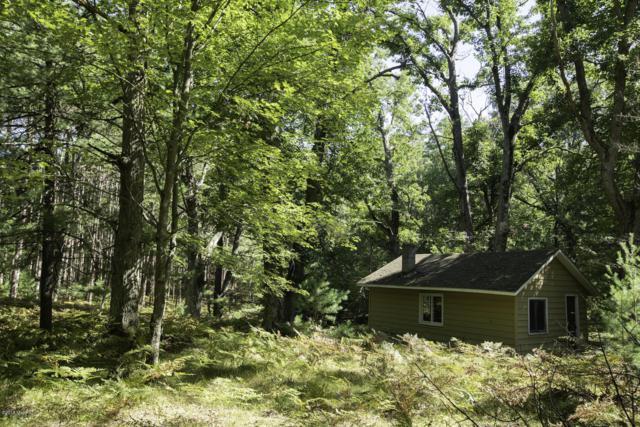 00 V/L Seasonal Road 5523, Paris, MI 49338 (MLS #18052567) :: Deb Stevenson Group - Greenridge Realty