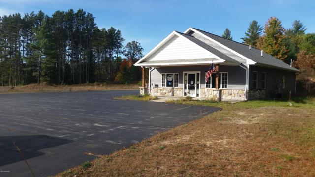 484 W State Street, Fife Lake, MI 49633 (MLS #18052672) :: Matt Mulder Home Selling Team