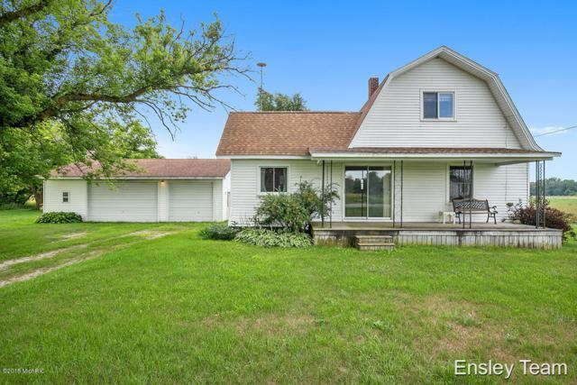 10335 5 Mile Rd, Lakeview, MI 48850 (MLS #18052850) :: Deb Stevenson Group - Greenridge Realty