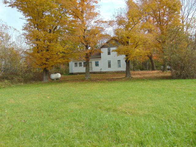 14417 Co Rd 681, Grand Junction, MI 49056 (MLS #18053133) :: Deb Stevenson Group - Greenridge Realty