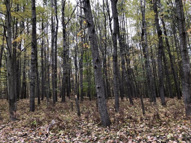 12186 Aspen Drive, Canadian Lakes, MI 49346 (MLS #18053174) :: Deb Stevenson Group - Greenridge Realty