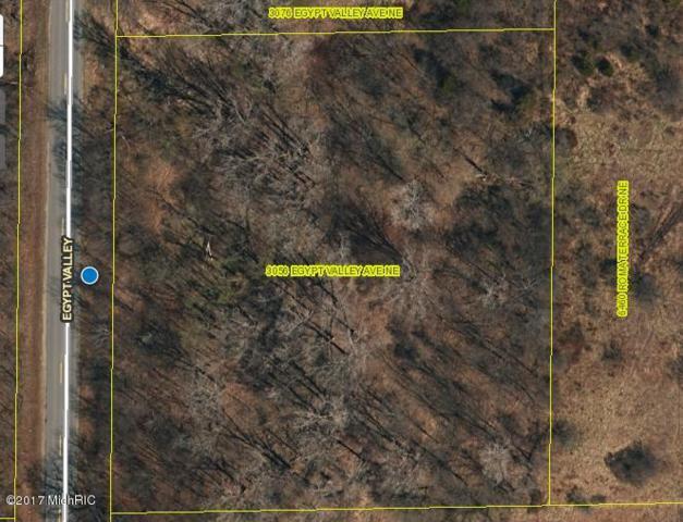 3056 Egypt Valley Avenue NE, Ada, MI 49301 (MLS #18053260) :: JH Realty Partners