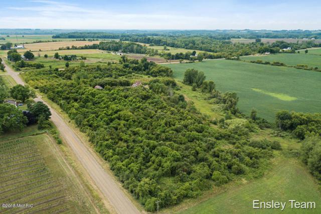 Parcel D Laketon Ave, Casnovia, MI 49318 (MLS #18053537) :: Deb Stevenson Group - Greenridge Realty