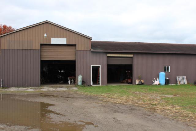 8612 Stevensville-Baroda Road, Baroda, MI 49101 (MLS #18053571) :: Deb Stevenson Group - Greenridge Realty