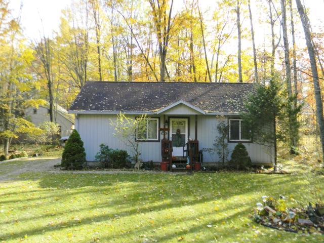 12123 St. Johns Drive, Canadian Lakes, MI 49346 (MLS #18053589) :: Deb Stevenson Group - Greenridge Realty