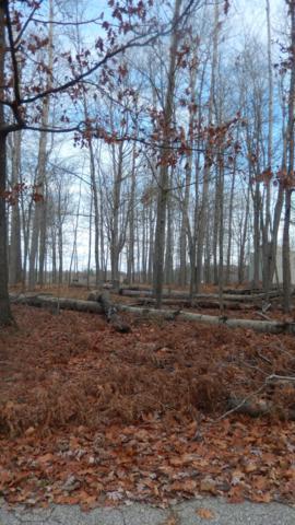 9050 Timberlane Drive, Canadian Lakes, MI 49346 (MLS #18053827) :: Deb Stevenson Group - Greenridge Realty