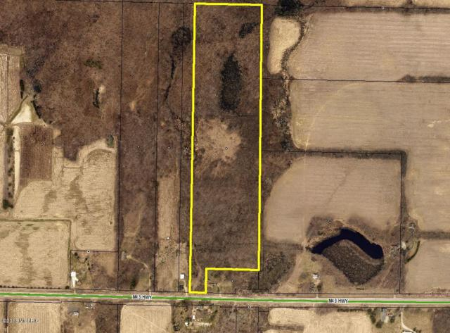 35684 M 43 Highway, Paw Paw, MI 49079 (MLS #18053940) :: JH Realty Partners