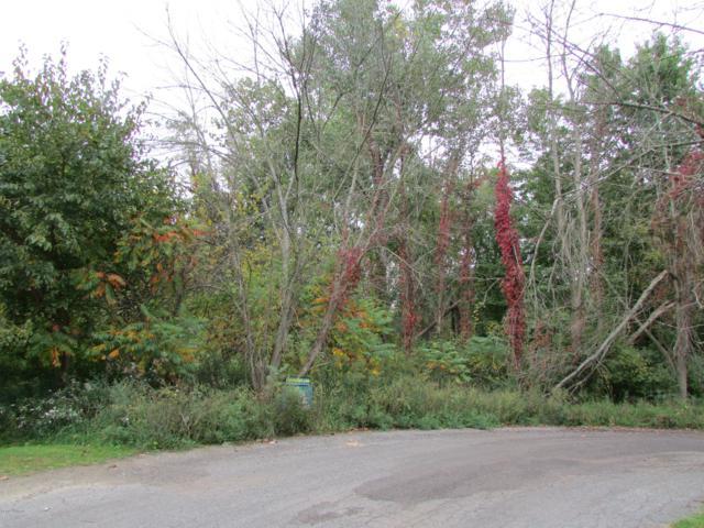 48681 Valley Court, Paw Paw, MI 49079 (MLS #18053983) :: Deb Stevenson Group - Greenridge Realty